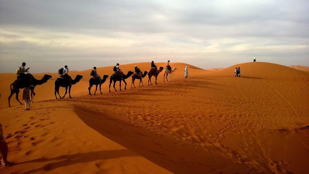 Co warto wiedzieć o pustyniach